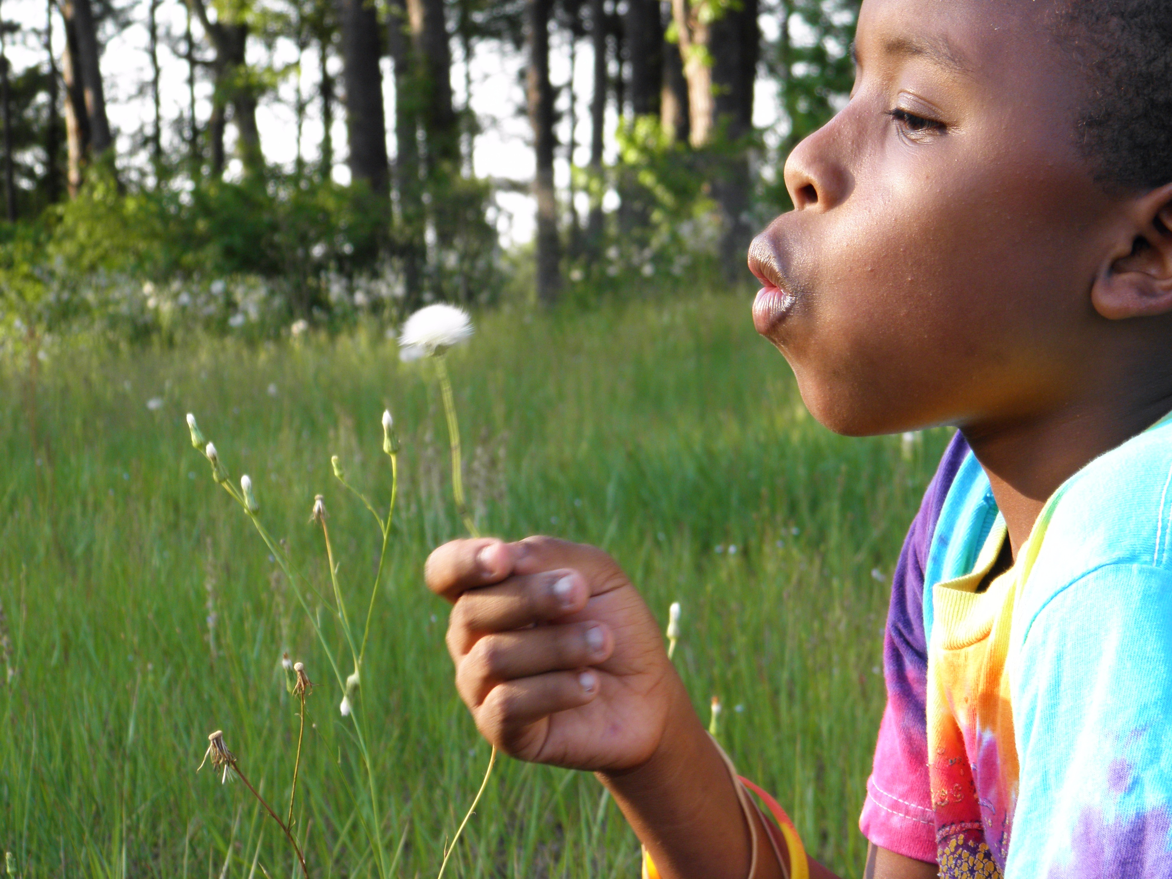 Scientists can now detect 17 diseases by smell