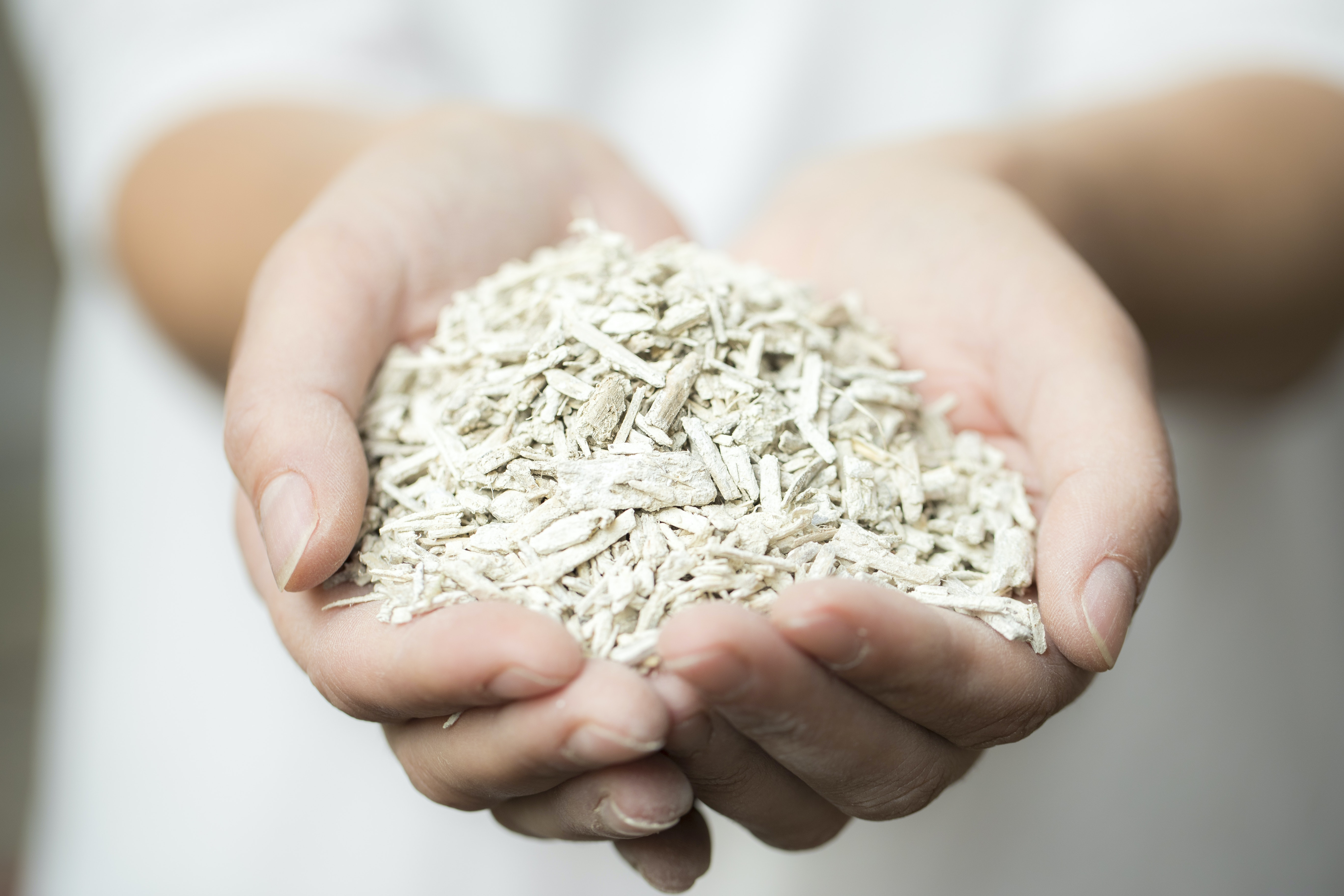 Hemp will save us from fire, cockroaches, heat, and microplastics