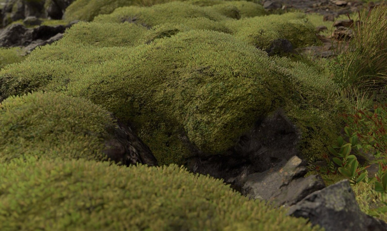 Just look at that Death Stranding moss.