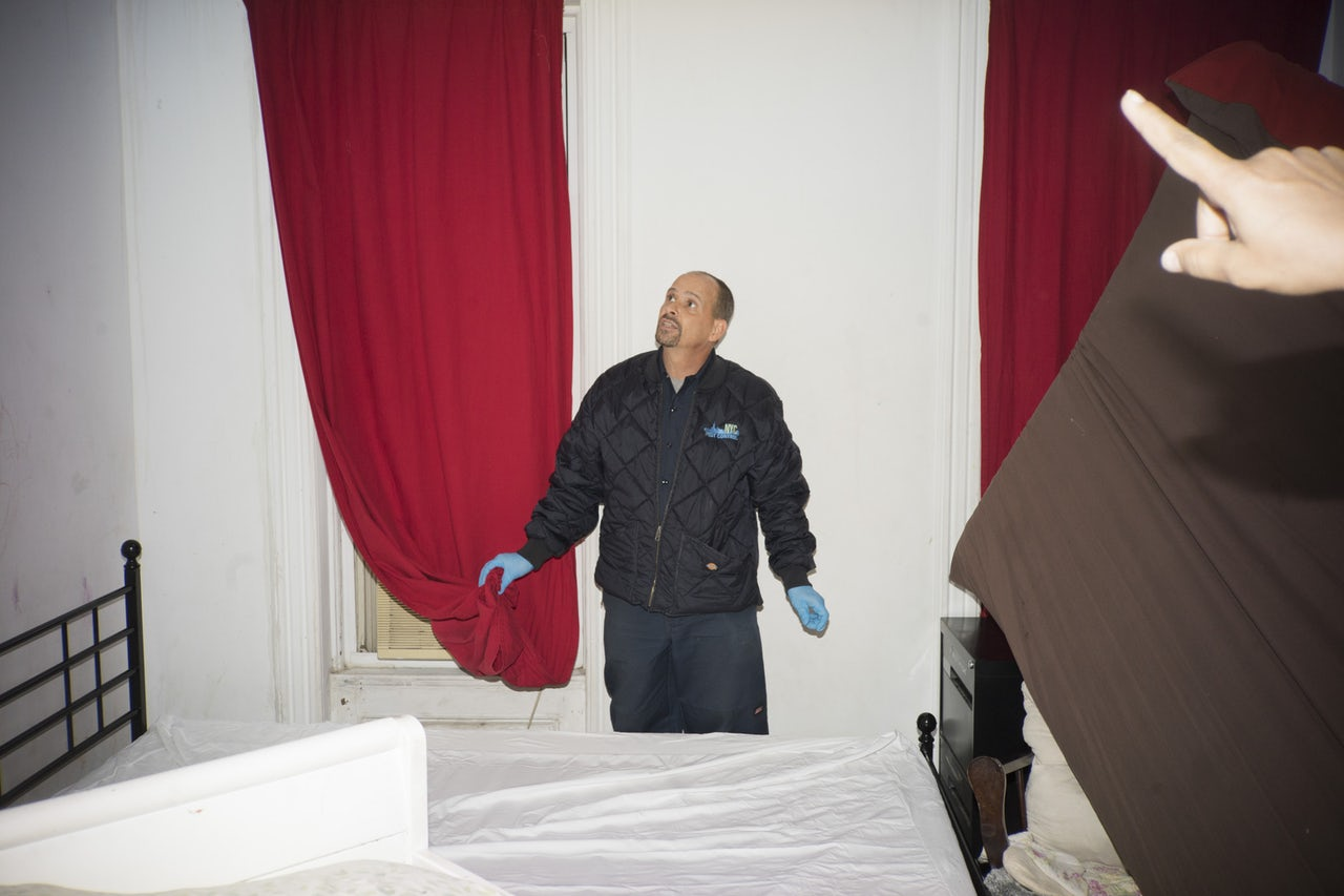 Phenomenal The Bed Bug Whisperer Of Brooklyn The Outline Home Interior And Landscaping Mentranervesignezvosmurscom